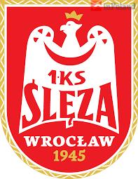 Вроцлавский БК «Ślęzа» раздаст школьникам 7 тысяч баскетбольных мячей