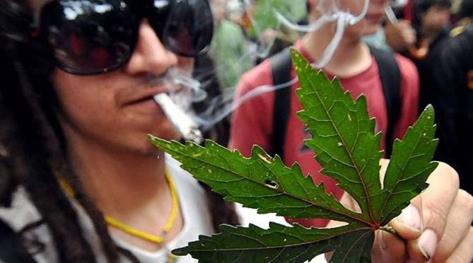 Во Вроцлаве полиция нашла у парня больше 500 порций марихуаны