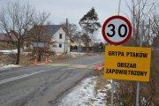 В Нижней Силезии объявлен карантин из-за птичьего гриппа