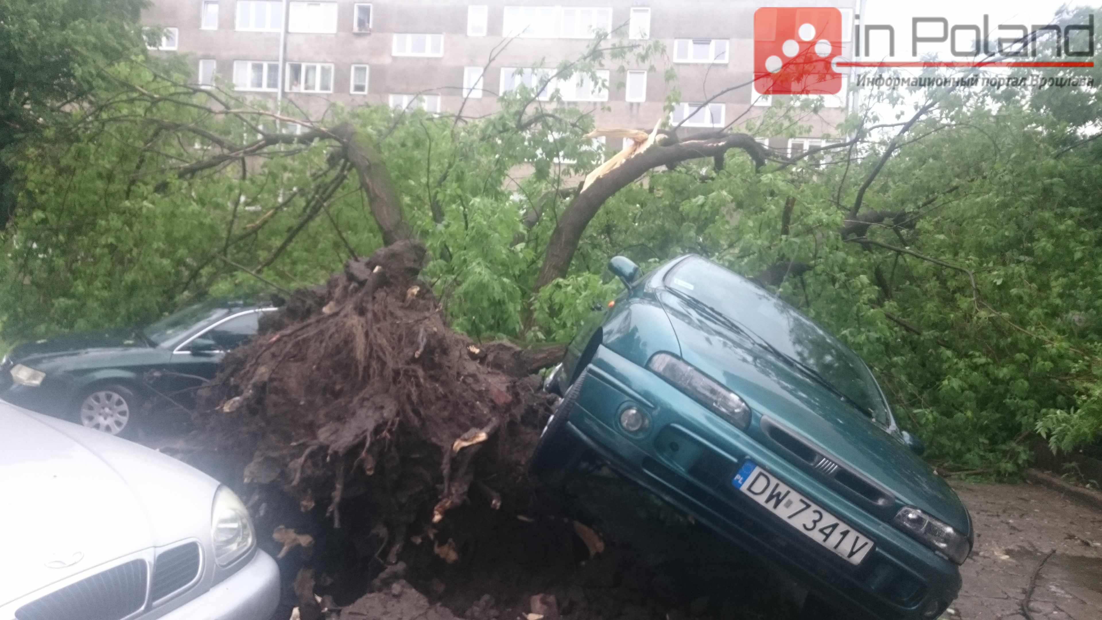 Буря во Вроцлаве. Первые последствия (+ФОТО)