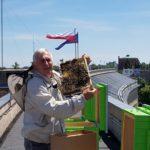 """В Нижній Сілезії на даху """"уженду"""" поселили бджіл"""