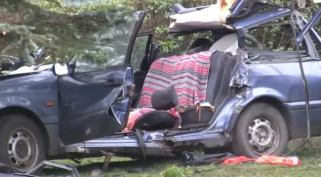 У Нижній Сілезії дерево впало на авто: водій загинув, пасажир поранений