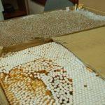 В Тшебниці виявили нелегальну тютюнову фабрику