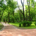Вроцлавский парк пойдет под застройку