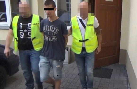 Польща: поліція затримала 4 українців, відповідальних за серію пограбувань