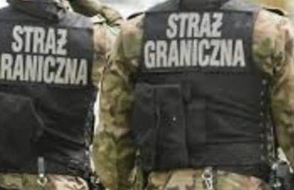 Польські прикордонники затримали українця, який намагався перегнати крадену  спецтехніку з Європи