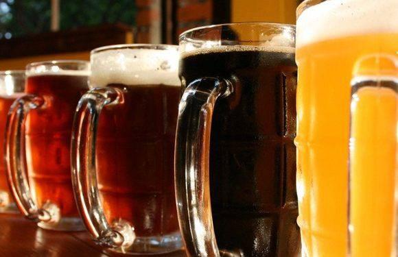 Муніципалітет Вроцлава прийняв рішення: на острові Слодовому дозволено вживати алкоголь