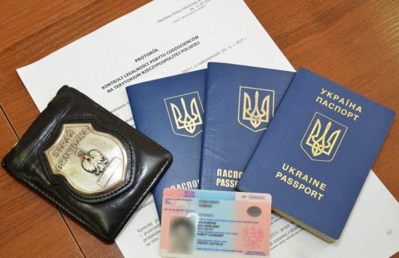 Затримано 15 громадян України і Грузії, що нелегально працювали на території Польщі