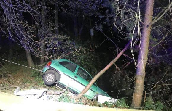 """Нижня Сілезія: 19-річний водій Opel так втікав від поліції, що аж приземлився в ставку, ще й """"дістав"""" струмом"""