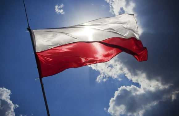 Барометр зайнятості в Польщі — прогноз на 2019 рік