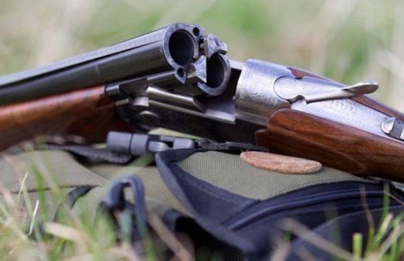 У Вроцлаві на узбіччі дороги знайдено вогнепальну зброю