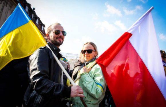 Хто може працювати в Польщі без дозволу на роботу?