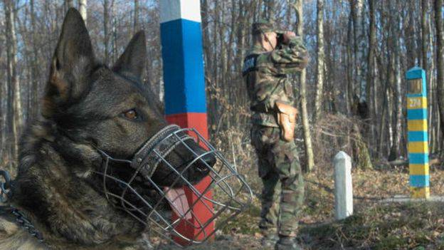 Пес покусав за сідниці українця, що тікав від поліції