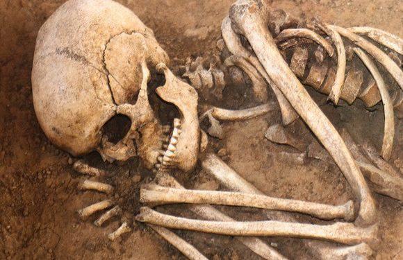 Моторошне відкриття в нижньосілезькому ужонді: тут знайшли людський череп