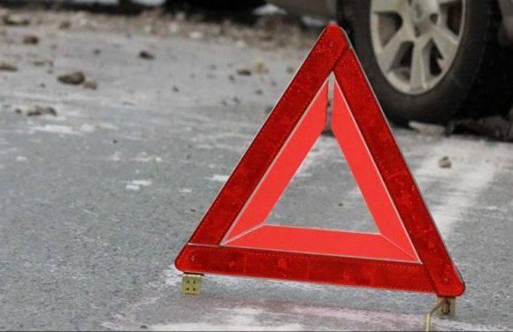 Жахлива аварія у Німеччині за участю поляків та вантажівки з 180 свинями [ФОТО]