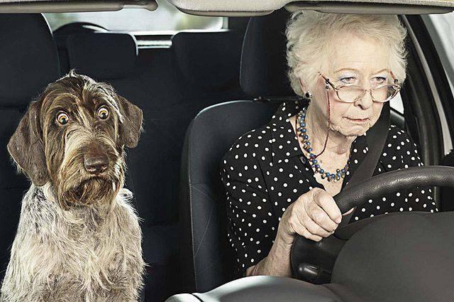 В Польщі запровадять обов'язкову перевірку стану здоров'я власників авто віком старше 60 років?
