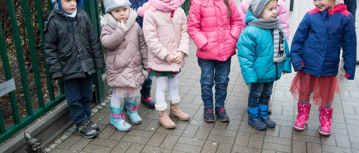 12 березня стартує електронний набір до початкових шкіл Вроцлава