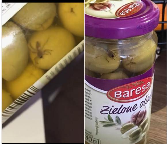 Оливки не купувати: в олавському «Лідлі» продають делікатес з живими павуками