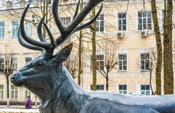 Новий проект в Єленій Гурі: тут з'являться фігурки оленів