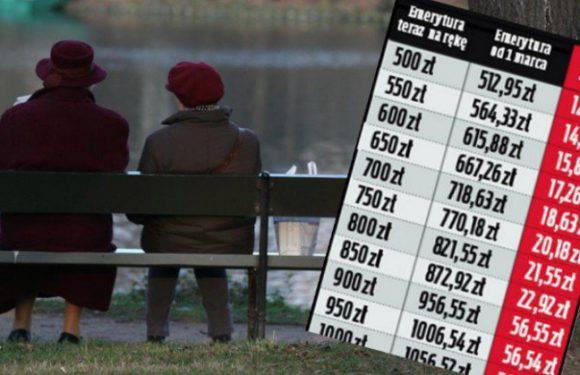 Чудова новина для пенсіонерів в Польщі! Уряд готує підвищення пенсійних виплат