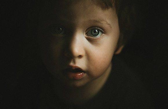 У Нижній Сілезії жінка ледь не вбила ножем свого сина