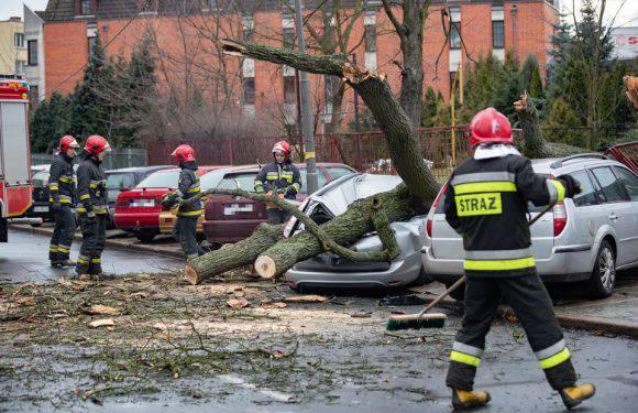 У Польщі занотовано понад 1000 втручань рятувальних служб у зв'язку зі штормом