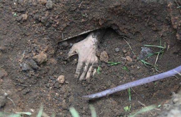 Трагічна смерть українця на Вавелі: чоловіка поховано живцем під землю