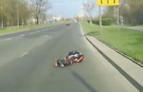У Вроцлаві на мотоцикліста вискочив олень (+ВІДЕО)
