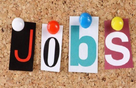 Нижня Сілезія виділить 160 мільйонів злотих на підтримку безробітних