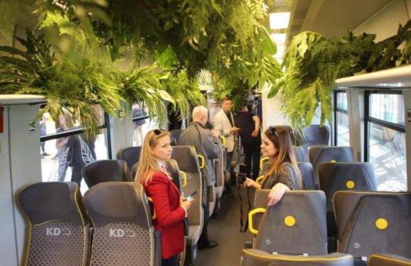 Вроцлавом курсує спеціальний зелений потяг [+ФОТО]