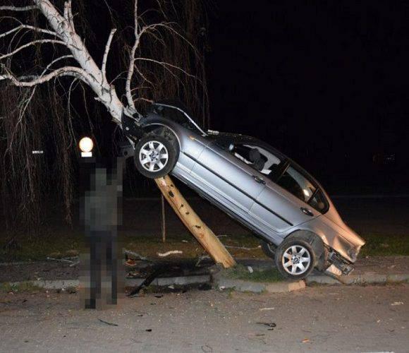 В Польщі водій виїхав на дерево: є 4-ро поранених