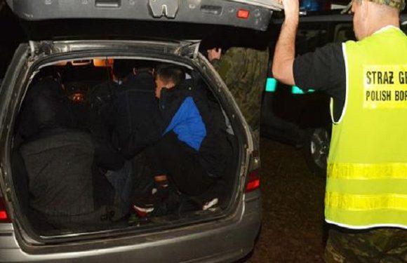 В Польщі затримали авто, в якому ховалося… 10 в'єтнамців