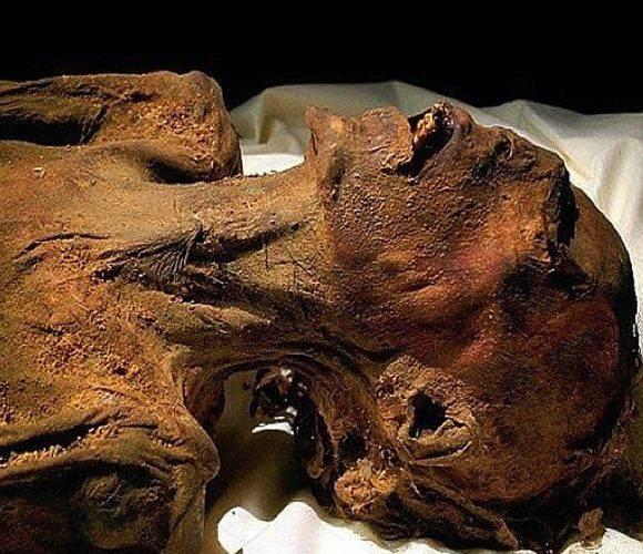 Шок! В одному з вроцлавських будинків знайшли мумію