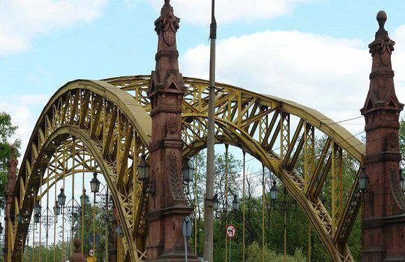 На вроцлавський міст впало дерево, зміни руху транспорту (+ВІДЕО)