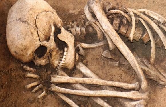На вроцлавському кладовищі знайшли коробку з людськими останками