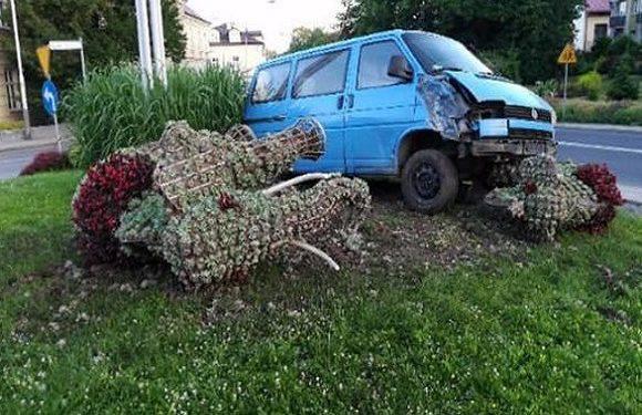 На Підкарпатті українець заснув за кермом і протаранив… слонів