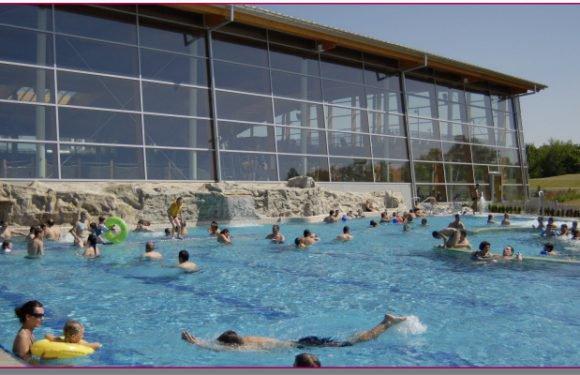 Аквапарк Вроцлава  запрошує на 1-й Чемпіонат з плавання собачкою