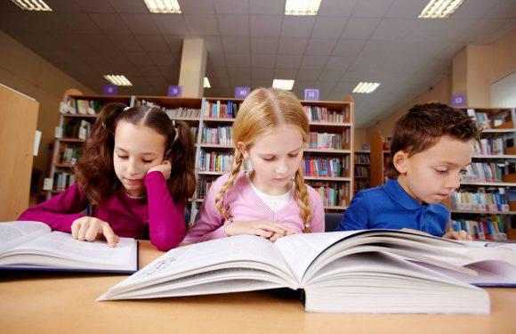 Велика Книжкова Колекція у Вроцлаві шукає волонтерів