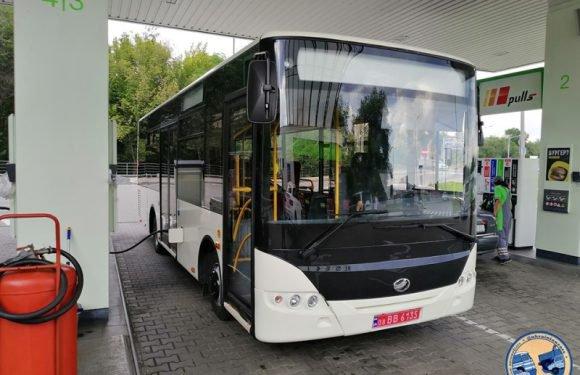 У Польщі  працюють близько 100 автобусів виробництва ЗАЗ