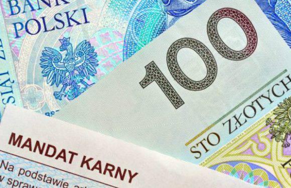 Трьох українців затримали про спробі втечі з місця незаконного працевлаштування