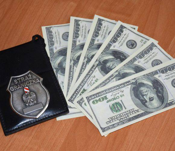Українців затримали на кордоні з підробленими доларами