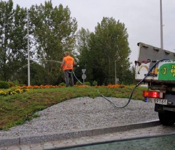 Абсурд в Легниці: міська служба підливала газон… під час дощу