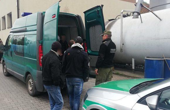 У Кракові викрили недобросовісну агенцію з працевлаштування: 9 українців депортовано [+ФОТО]