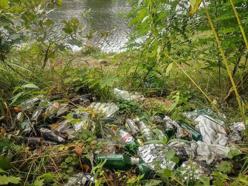 Прибираємо річки Вроцлава