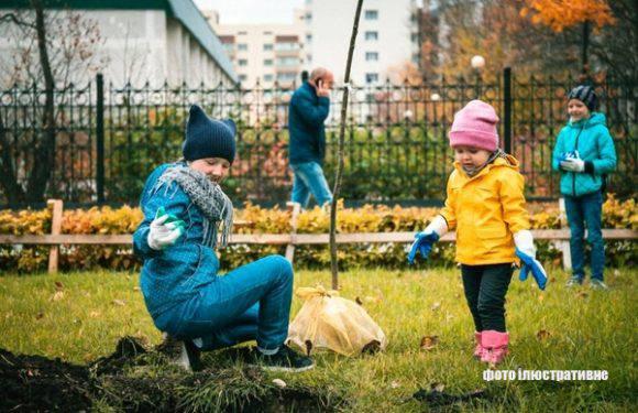 19 жовтня – осінній етап акції висаджування дерев — WROśnij we    WROcław