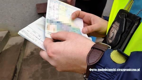 Прикордонники у Польщі виявили 21 незаконно працюючого іноземця. Покарають й роботодавців