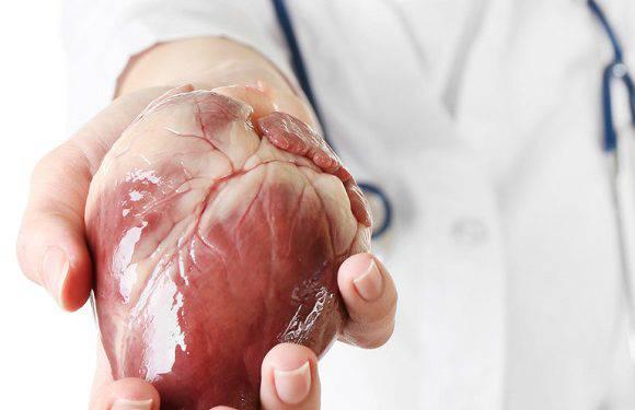 У Вроцлаві робитимуть операції з пересадки серця