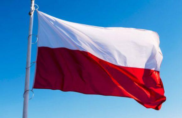 У Польщі оприлюднено офіційні результати парламентських виборів