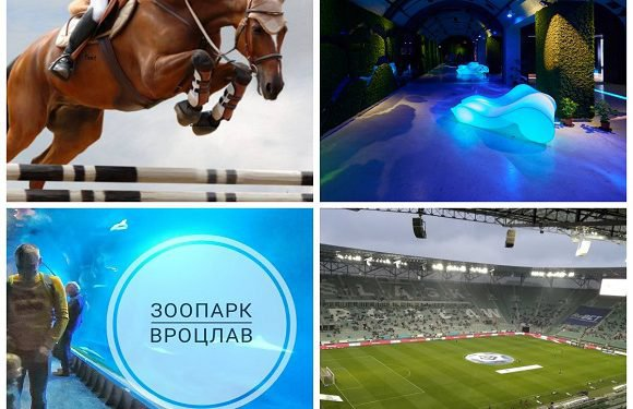 Хочеш безкоштовно відвідати Аквапарк, Гідрополіс та зоопарк у Вроцлаві? Дізнайся, як!