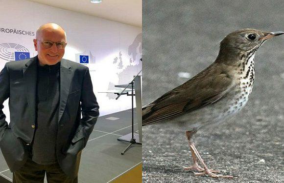 Екс-мер Вроцлава врятував пташеня від загибелі [+ВІДЕО]